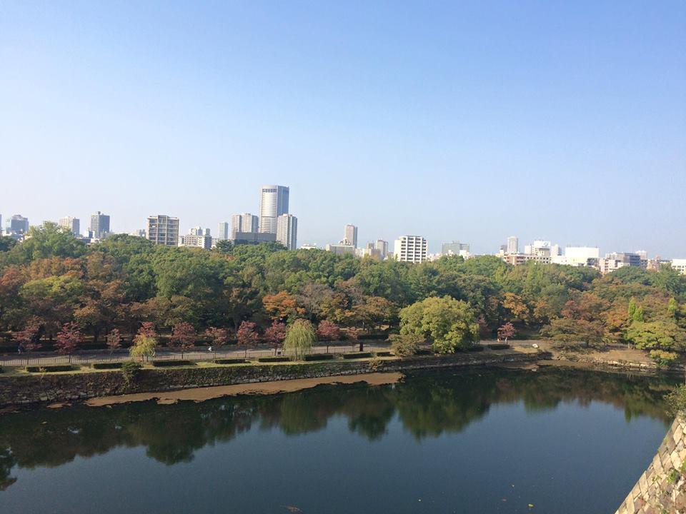 Osaka Castle View